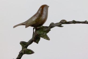 Vogelbraam 10