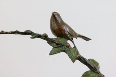 Vogelbraam 6