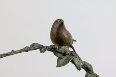 Vogelbraam 7