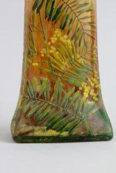 Mimosa 7