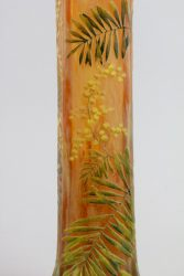 Mimosa 8